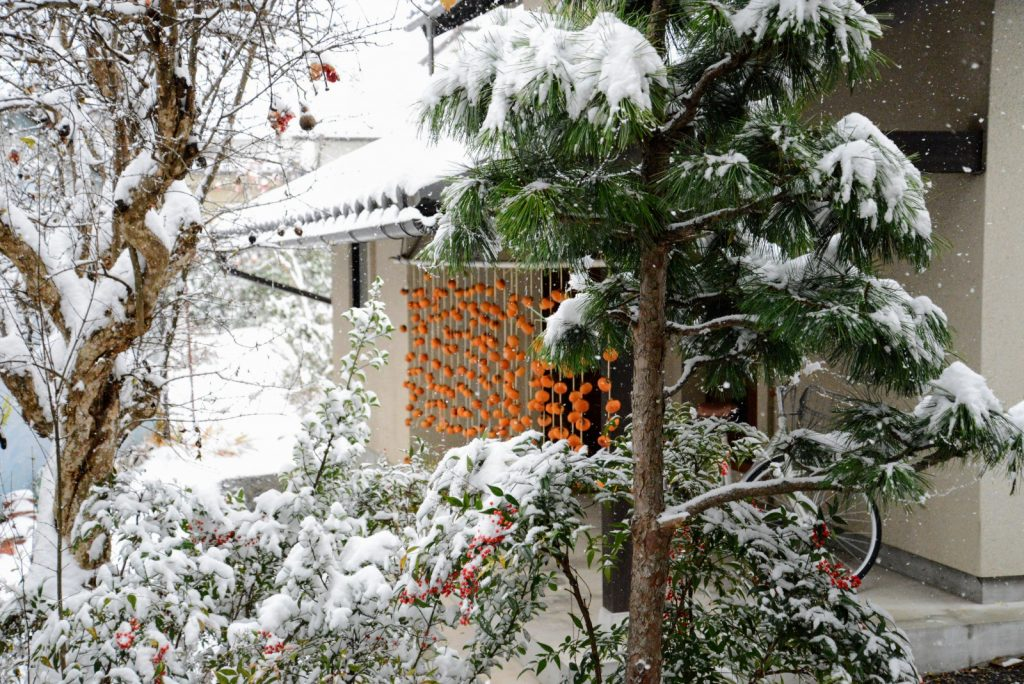 蔵の入り口につるした干し柿。天気のいいときを狙って干しましょう、のはずが雨、雪・・・
